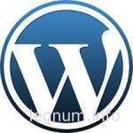 Шаблон для записей рубрики Wordpress