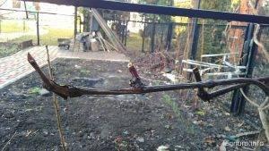Обрезка винограда зимой 2016