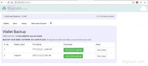 Т.к. Skycoin кошелек не позволяет установить пароль, то я сделал backup файлов на внешнее устройство