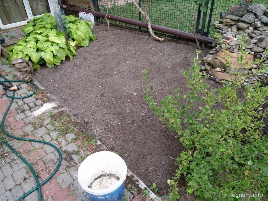Обновляем газон возле дома