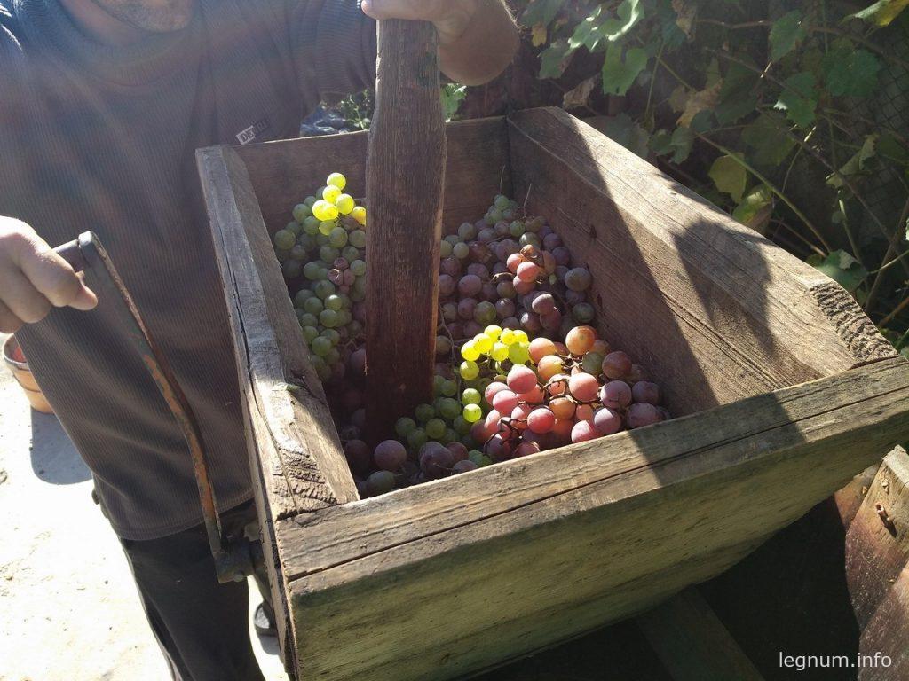 Как сделать вино?