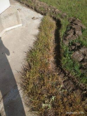 Чем выжечь траву и сорняк