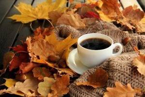 Как не простудиться осенью